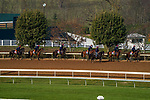 November 5, 2020: The Aidan O'Brien group of trainees backtrack at Keeneland Racetrack in Lexington, Kentucky on November 5, 2020. John Voorhees/Eclipse Sportswire/Breeders Cup/CSM