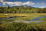 View of Mt. Katahdin and Baxter State Park from Compass Pond marsh, Piscataquis County, ME, USA