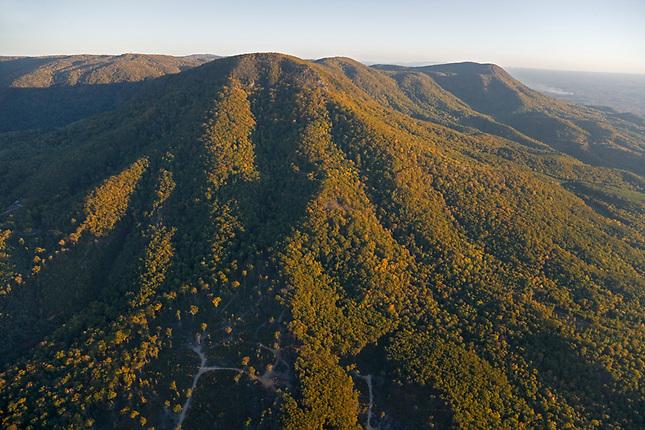 Grassy Mountain, Chattachoochee National Forest
