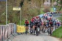 up the Oude Kwaremont<br /> <br /> 105th Ronde van Vlaanderen 2021 (MEN1.UWT)<br /> <br /> 1 day race from Antwerp to Oudenaarde (BEL/264km) <br /> <br /> ©kramon