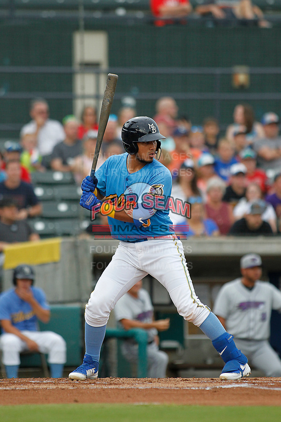 Myrtle Beach Pelicans catcher Jhonny Pereda (15) at bat during a game against the Winston-Salem Dash at Ticketreturn.com Field at Pelicans Ballpark on July 23, 2018 in Myrtle Beach, South Carolina. Winston-Salem defeated Myrtle Beach 6-1. (Robert Gurganus/Four Seam Images)