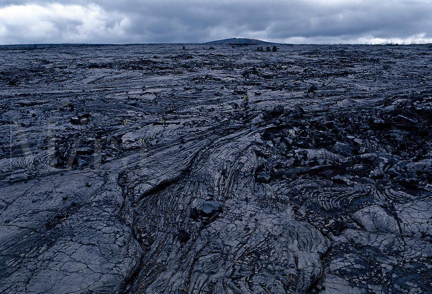 Volcanic landscape, Hawaii