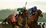 June 4, 2021:  Estilo Talentoso with Javier Castellano wins the Bed of Roses Stakes at Belmont Park in Elmont, New York on June 4, 2021. Evers/Eclipse Sportswire/CSM