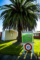 Panama Village in Masterton, New Zealand on Tuesday, 4 August 2020. Photo: Dave Lintott / lintottphoto.co.nz