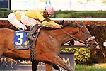 HALLANDALE BEACH, FL -DECEMBER 03:   #3 Royal Posse (NY) with jockey Luis Saez on board, wins the $200K Claiming Crown Jewel Stakes at Gulfstream Park on December 03, 2016 in Hallandale Beach, Florida. (Photo by Liz Lamont/Eclipse Sportswire/Getty Images)