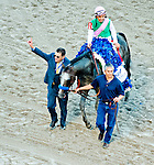 HALLANDALE BEACH, FL - JAN 28: Assistant Trainer Jimmy Barnes leads Arrogate #1, ridden by Mike Smith, into the winner's circle after he won the $12,000,000 Pegasus World Cup Invitational the Pegasus World Cup Invitational Day at Gulfstream Park Race Course on January 28, 2017 in Hallandale Beach, Florida. (Photo by Scott Serio/Eclipse Sportswire/Getty Images)