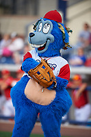 Williamsport Crosscutters mascot Boomer before a game against the Mahoning Valley Scrappers on July 8, 2017 at BB&T Ballpark at Historic Bowman Field in Williamsport, Pennsylvania.  Williamsport defeated Mahoning Valley 6-1.  (Mike Janes/Four Seam Images)