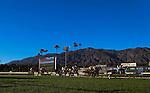 Winning Prize (ARG) with Rafael Bejarano aboard wins the Grade II Arcadia Stakes at Santa Anita Park in Arcadia, California on February 1, 2014. (Zoe Metz/Eclipse Sportswire)
