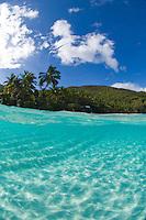 Split level<br /> Trunk Bay, St. John<br /> Virgin Islands National Park