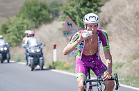 as it is scorching hot, keeping cool & hydrated is essential > Iuri Filosi (ITA/Bardiani-CSF-Faizanè) does both in 1 go...<br /> <br /> 14th Strade Bianche 2020<br /> Siena > Siena: 184km (ITALY)<br /> <br /> delayed 2020 (summer!) edition because of the Covid19 pandemic > 1st post-Covid19 World Tour race after all races worldwide were cancelled in march 2020 by the UCI