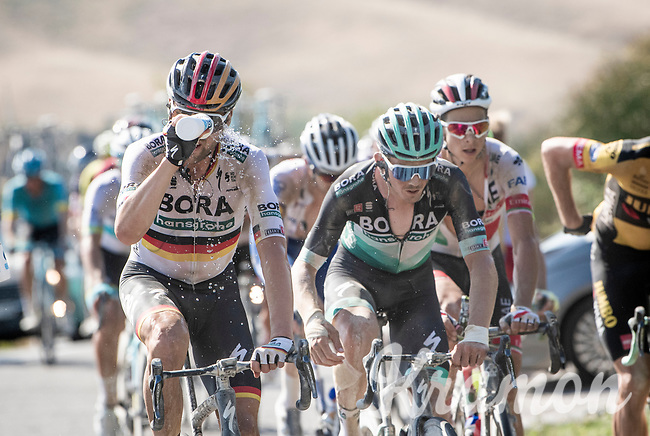Maximilian Schachmann (DEU/Bora-Hansgrohe) taking a mid-race shower in the excruciating heat<br /> <br /> 14th Strade Bianche 2020<br /> Siena > Siena: 184km (ITALY)<br /> <br /> delayed 2020 (summer!) edition because of the Covid19 pandemic > 1st post-Covid19 World Tour race after all races worldwide were cancelled in march 2020 by the UCI