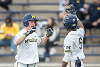 Michigan Wolverines outfielder Miles Lewis (3) is greeted at the plate by teammate Christian Bullock (5) after scoring against the Maryland Terrapins on April 13, 2018 in a Big Ten NCAA baseball game at Ray Fisher Stadium in Ann Arbor, Michigan. Michigan defeated Maryland 10-4. (Andrew Woolley/Four Seam Images)