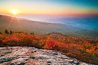 Autumn sunrise on the slope of Grandfather Mountain