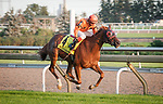 TORONTO, ON - September 15: Johnny Bear #4, ridden by Luis Contreras, wins the G1 Northern Dancer Turf S. on Woodbine Mile Day at Woodbine Racetrack in Toronto, ON (Photo by Sophie Shore/Eclipse Sportswire/Getty Images)