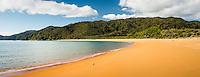 Morning on Totaranui beach on Abel Tasman Coast Track, Abel Tasman National Park, Nelson Region, South Island, New Zealand, NZ