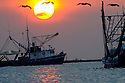 Shrimp boats outfitted to skim oil head out of Grand Isle to clean up the massive oil before it hits the Louisiana shore, Wed., June 9, 2010. Louisiana Seafood..