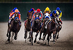 August  02 2014: Synthetic racing action at Del Mar Race Track in Del Mar CA. Alex Evers/ESW/CSM