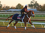 Vekoma, trained by trainer George Weaver, exercises in preparation for the Breeders' Cup Sprint at Keeneland Racetrack in Lexington, Kentucky on November 3, 2020.
