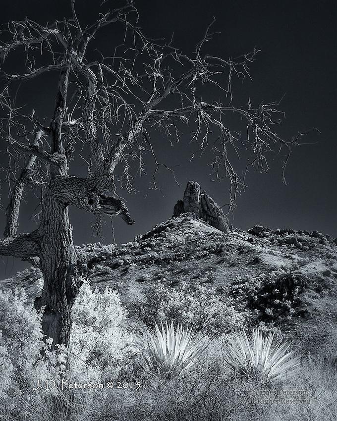 Thumb Butte and Yuccas, Atascosa Mountains, Arizona
