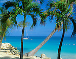 Antigua, West Indies   <br /> Palm trees frame a view of the blue waters of Dickinson Bay - Caribbean Islands