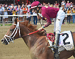 Sheer Drama (no. 2), ridden by Joe Bravo and trained by David Fawkes, wins the 68th running of the grade 1 Personal Ensign Stakes for fillies and mares three years old and upward on August 29, 2015 at Saratoga Race Course in Saratoga Springs, New York. (Bob Mayberger/Eclipse Sportswire)