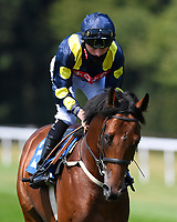 Gosnay Gold ridden by Kieran Shoemark goes down to the start of The AJN Steelstock Kentford British EBF Novice Stakes   during Horse Racing at Salisbury Racecourse on 9th August 2020