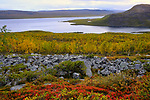Lapland 0919