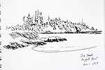 Kyuquot Sound, Rugged Point, Vancouver Island, ink on paper, Journal Art 2013