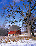 Johnson Sauk Trail State Park, IL<br /> Winter trees frame the view of Ryan's round barn (1910) in Henry County