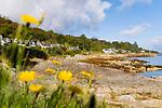 Schottland, Isle of Arran, Meer, Ufer, Bucht, Haeuser, Gebaeude, Dorf, Dorfansicht, Felsen, Fels, Wasser, niemand, Landschaft, Europa, Grossbritannien, Unitary Authority North Ayrshire, Firth of Clyde, Kilbrennan-Sund, Irische See, Reise, Travel, 2009 <br /> <br /> Engl.: Europe, Great Britain, Scotland, Unitary Authority North Ayrshire, Firth of Clyde, Kilbrennan-Sund, Isle of Arran, sea, bay, coast. houses, village, rocks, water, 2009