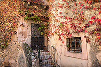 Charming rustic facade and ivy, Eza, Cote d'Azur, France
