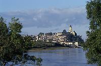 Europe/France/Pays de la Loire/Maine-et-Loire/Saint-Florent-Le-Vieil : La Loire