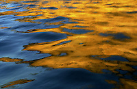 ZUMAIA - DEBA ARTEKO ITSASERTZA. Sea reflections in Zumaia.<br /> 2003- 05- 22.<br /> ARGAZKIA: ANDER GILLENEA