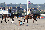 August 14, 2021, Deauville (France) - Racehorses training at the beach in Deauville. [Copyright (c) Sandra Scherning/Eclipse Sportswire)]