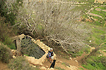 Israel, Jerusalem Mountains, Ein Kfira in Nahal Kfira
