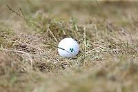 Sunday 31st May 2015; Shane Lowry's, Ireland, ball nestles in the light rough on the 18th<br /> <br /> Dubai Duty Free Irish Open Golf Championship 2015, Round 4 County Down Golf Club, Co. Down. Picture credit: John Dickson / DICKSONDIGITAL