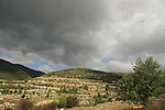 Israel, Upper Galilee. Scenery by the road between the Druze villages Horpish and Beth Jan .