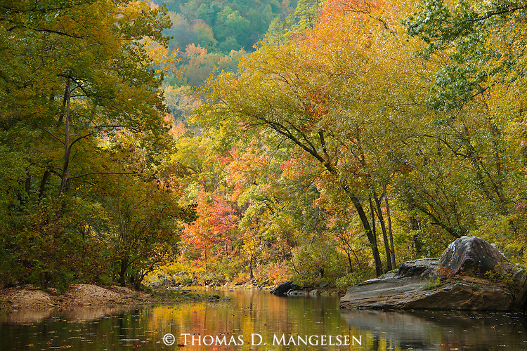 The Buffalo River displays its natural beauty, reflecting hues of autumn just before the season's peak of color.