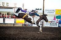 Gem State PRCA Rodeo 2017