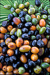 close-up of fresh saw palmetto berries, effective in treating BPH, benign prostatic hypertrophy