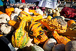 11.7.09 - Farmers Market, Evanston, IL