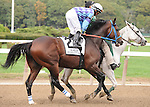 Golddigger's Boy, ridden by Jose Lezcano, runs in the Kelso Handicap (GII) at Belmont Park in Elmont, New York on September 29, 2012.  (Bob Mayberger/Eclipse Sportswire)