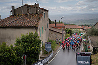 peloton coming over the Montalbano climb<br /> <br /> Stage 2: Bologna to Fucecchio (200km)<br /> 102nd Giro d'Italia 2019<br /> <br /> ©kramon