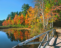 Lake Chocorua lined with fall colors in New Hampshire