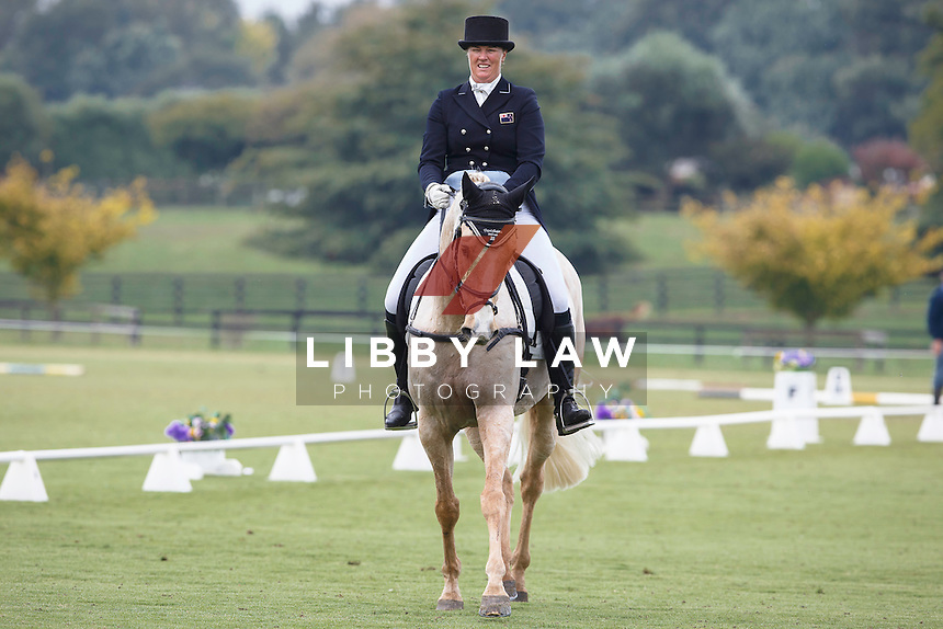 NZL-Donna Edwards-Smith (MR HOKEY POKEY) INTERIM-1ST: CIC3* DRESSAGE: 2016 NZL-Kihikihi International Horse Trial (Friday 8 April) CREDIT: Libby Law COPYRIGHT: LIBBY LAW PHOTOGRAPHY