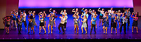 Fox Performing Arts Charitable Foundation 2017 award ceremony and show at Fabulous Fox Theater in St. Louis, Missouri on May 27,2017.