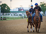 LOUISVILLE, KY - MAY 04: Gun Runner gallops in preparation for the Kentucky Derby at Churchill Downs on May 04, 2016 in Louisville, Kentucky. (Photo by Zoe Metz/Eclipse Sportswire/Getty Images)