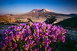 Mount St. Helens, Washington