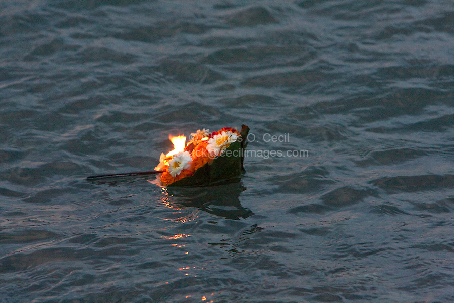 India, Rishikesh.  An offering of a lighted candle surrounded by marigold petals floats on the Ganges (Ganga).