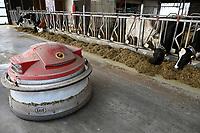 GERMANY, Echem, smart dairy cow milk farm, digitalization of agriculture, automatic fodder slider  / DEUTSCHLAND, Landwirtschaftlichen Bildungszentrum (EBZ) in Echem, Digitalisierung im Kuhstall und Melkstand, Futterschieber Roboter LELY JUNO